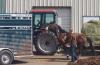 Kountz Arena Owner Dayle Kountz's request for change of venue in animal cruelty case denied by judge
