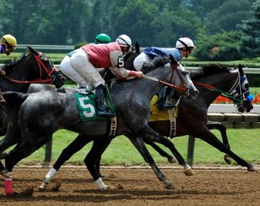 The Horseracing Integrity Act of 2017 (H.R. 2651) was introduced Thursday. It would create a new anti-doping and medication authority and uniform racing medication rules.