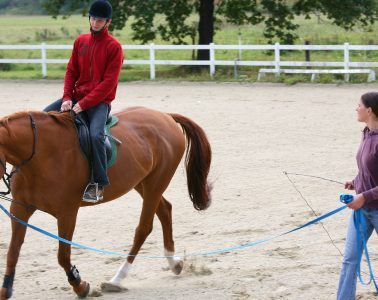 Horse riding therapy produces a multisensory environment. The three-dimensional movements of the horse's back create a sensory experience that closely resembles the human gait.