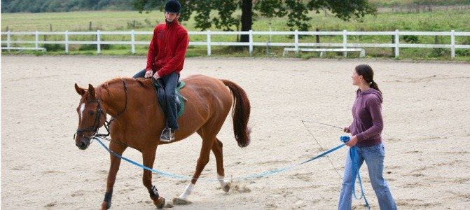 Horse riding therapy produces a multisensory environment. The three-dimensional movements of the horse's back createa sensory experience that closely resembles the human gait.