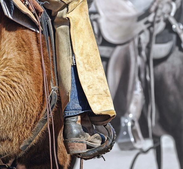 His owner, Dr. Peter Bernstein, had the sorrel horse named Peppy examined by his primary care veterinarian. He identified two stones in the gelding's bladder. They decided it was best for the Quarter Horse to go to UC Davis Veterinary Hospital for treatment.