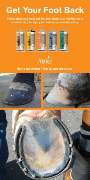 Get your horse's hoof back with Vettec products.