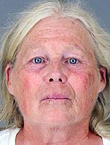 Second Hand Souls Animal Rescue operator Susan Guillot is charged with felony theft for allegedly defrauding horse buyers.