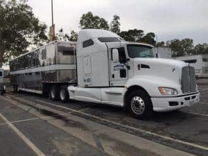 When looking to hire a licensed horse transporter, a good indicator is that if the rig does not have the company name, home-base location, and USDOT Number on it, they are hauling illegally.