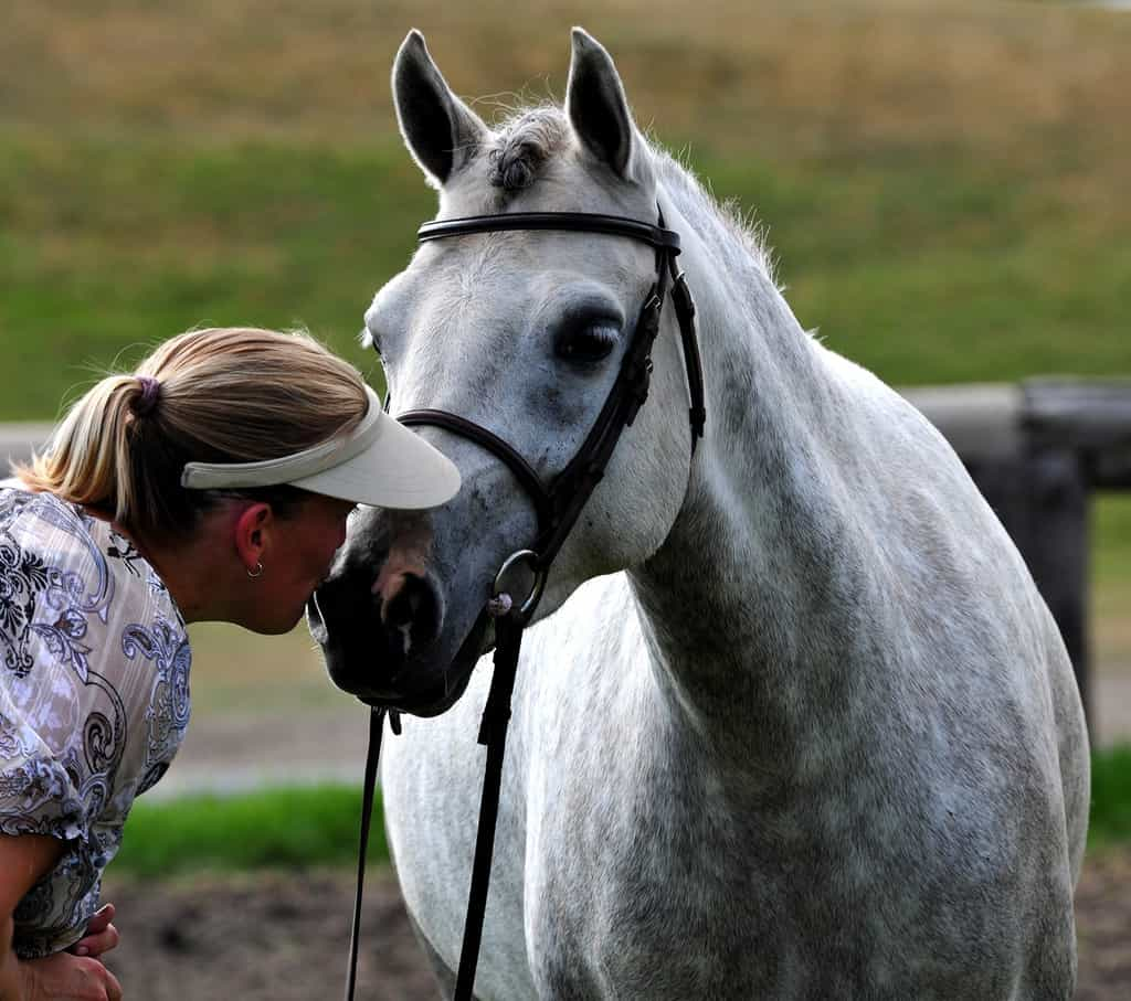 Tracy Dopko is a Certified Senior Equine, Livestock and Agricultural Appraiser with both the American & Canadian Society of Agricultural Appraisers.