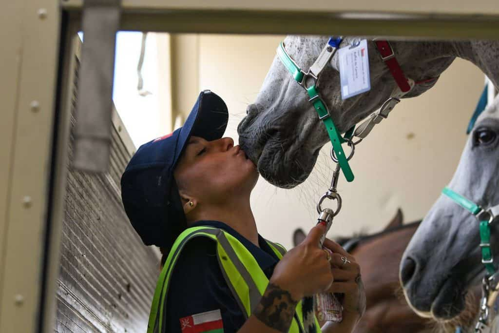 The friendly skies where the equine athlete's welfare,comfort, and well-being are top priorities.