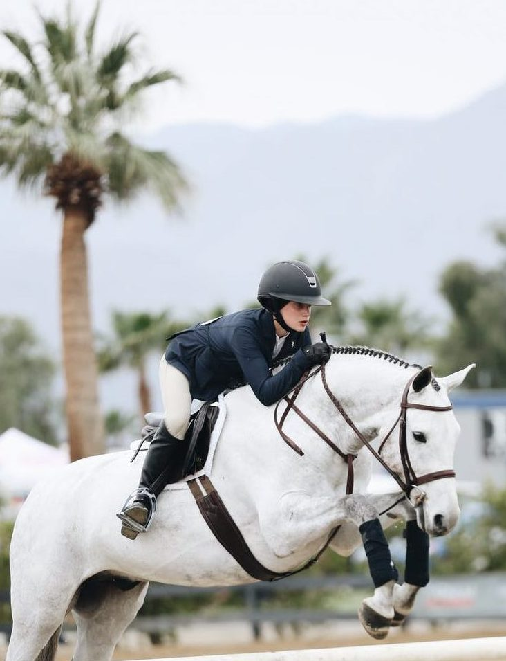 Riding Success and Mental Toughness at HorseAuthority.co