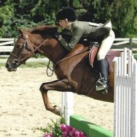 Haley Gassel first pony Topaz at horse show