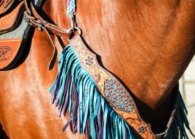 Horse Appraisal Services for Equine Litigation - What Questions to Ask before you Hire an Equine Appraiser