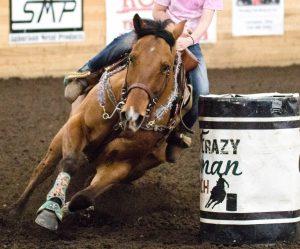 EHM Cases in Arizona, Idaho: One Horse Euthanized