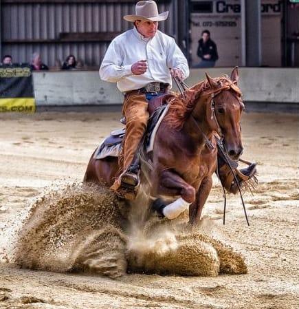 Equine Herpesvirus Myeloencephalopathy (EHM) Confirmed in Texas Horse after Reining Event